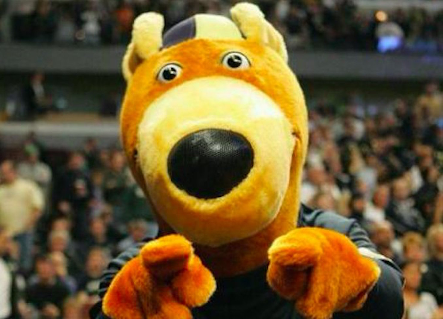 fancred sports akron has a mascot theft problem on its hands